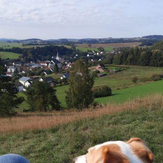 #Morningwalk with #Tayson – #Eifel #Gönnersdorf #Lissendorf – 12.09.2020
