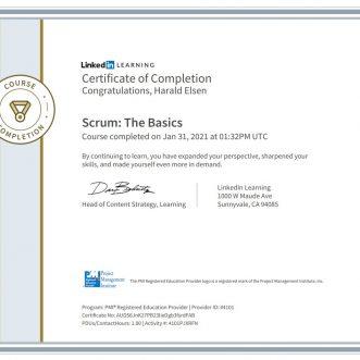 Scrum: The Basics