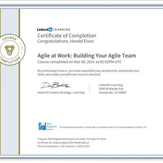 Agile at Work: Building Your Agile Team